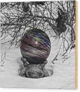 Gazing Ball Squared Wood Print