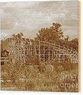 Geauga Lake 2  Wood Print