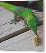 Gecko 2 Wood Print