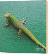 Gecko Crossing Wood Print