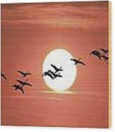 Geese Against The Sun Wood Print