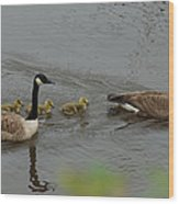 Geese And Goslings At The Flint River Wood Print