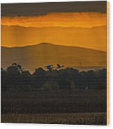 Geese At Sunset - 3 Wood Print