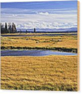 Geese At Yellowstone Lake Wood Print