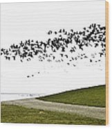 Geese Wood Print by Frits Selier
