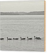 Geese In A Row Wood Print