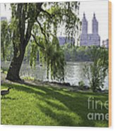 Geese In Central Park Nyc Wood Print