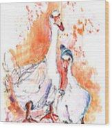 Geese In Spanish Winter Wood Print