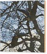 Geese In Twlight Sky Wood Print