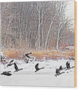 Geese Over Maumee River Wood Print