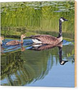 Geese Ripples Wood Print by Shell Ette