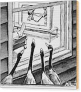 Geese Watching Hockey From A Window Wood Print