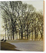 Geese Watching The Sunrise Wood Print by Vicki Jauron