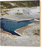 Geiser In Yellowstone Wood Print