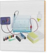 Gel Electrophoresis Equipment Wood Print