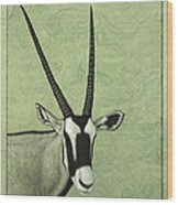 Gemsbok Wood Print by James W Johnson