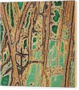 Gemstone Wood Print