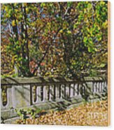 Genesee Valley Park Wood Print