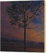 Genesis Tree Wood Print