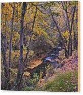 Genil River Wood Print
