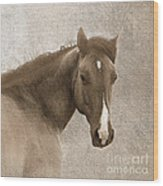 Gentle Devotion Wood Print