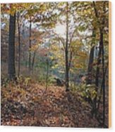 Gentle Forest Wood Print