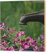 Gentle Rain - Old Water Pump - Pink Petunias - Casper Wyoming Wood Print