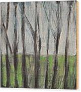 Gentle Rain Wood Print