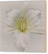 Gentle Shepherd White Wood Print