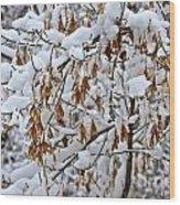 Gentle Snow Fall Wood Print