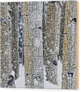 Gently Falling Forest Snow Wood Print