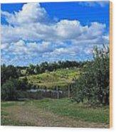 George Hill Orchard Wood Print