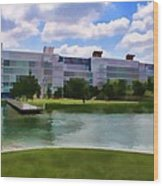 George R Brown Convention Center Wood Print by Audreen Gieger