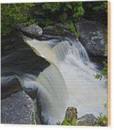 George W Childs Park Waterfall Wood Print