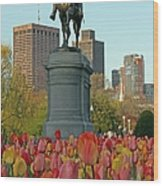 George Washington At The Boston Public Garden Wood Print