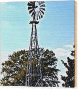 Georgia Windmill Wood Print
