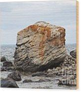 Georgian Bay Gneiss Wood Print