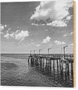 Georgia's St Simon's Island Pier Wood Print