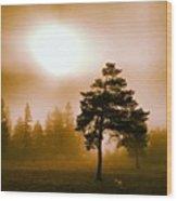 Morning Light Wood Print