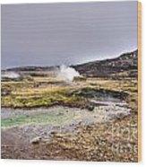 Geothermal Landscape  Wood Print