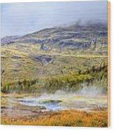 Geothermal Pools Wood Print