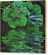 Geranium Leaves - Reflections On Pond Wood Print