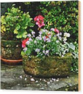 Geraniums And Lavender Flowers On Stone Steps Wood Print