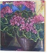 Geraniums Blooming Wood Print
