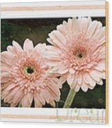 Gerber Daisy Dream 5 Wood Print