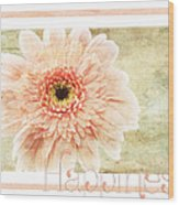 Gerber Daisy Happiness 1 Wood Print