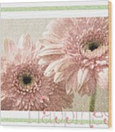 Gerber Daisy Happiness 3 Wood Print