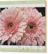 Gerber Daisy Happiness 4 Wood Print