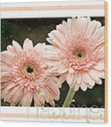 Gerber Daisy Happiness 5 Wood Print