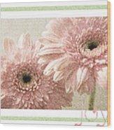 Gerber Daisy Joy 3 Wood Print